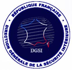 logo_dgsi-300x293